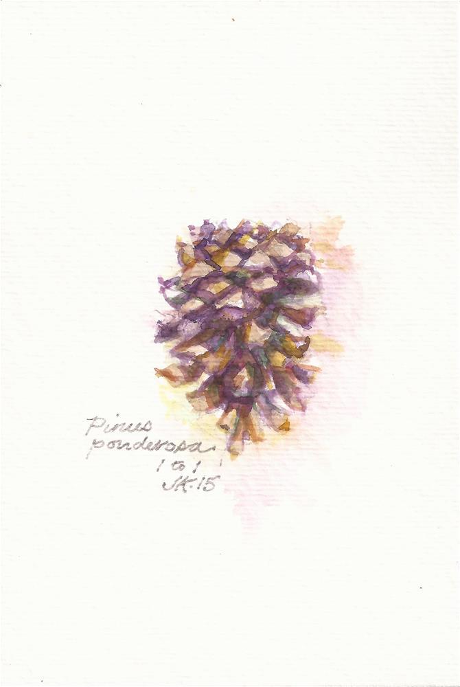 """Pinus pondrosa"" original fine art by Jean Krueger"