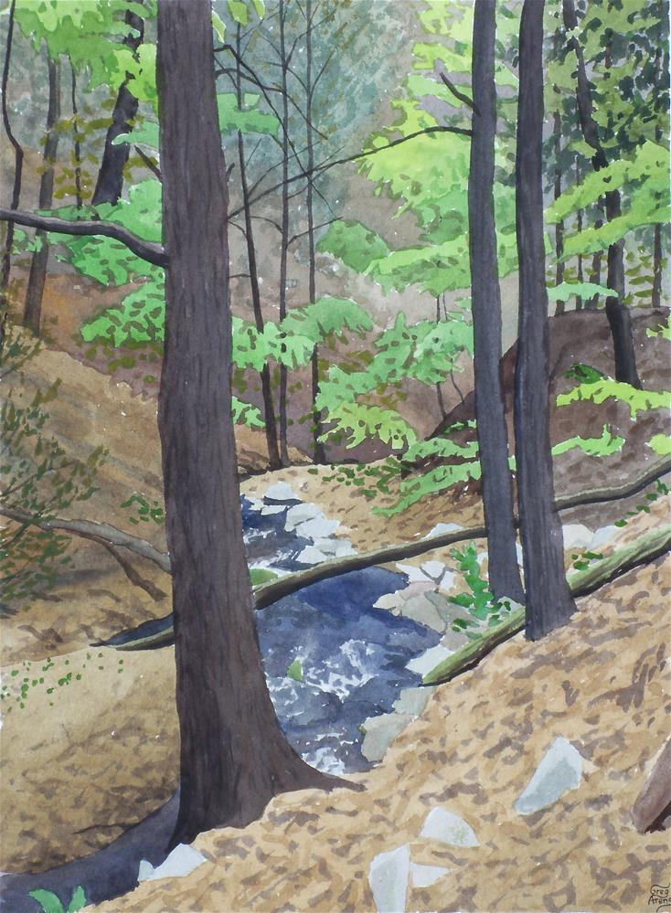 """Fish Hollow Branch"" original fine art by Greg Arens"