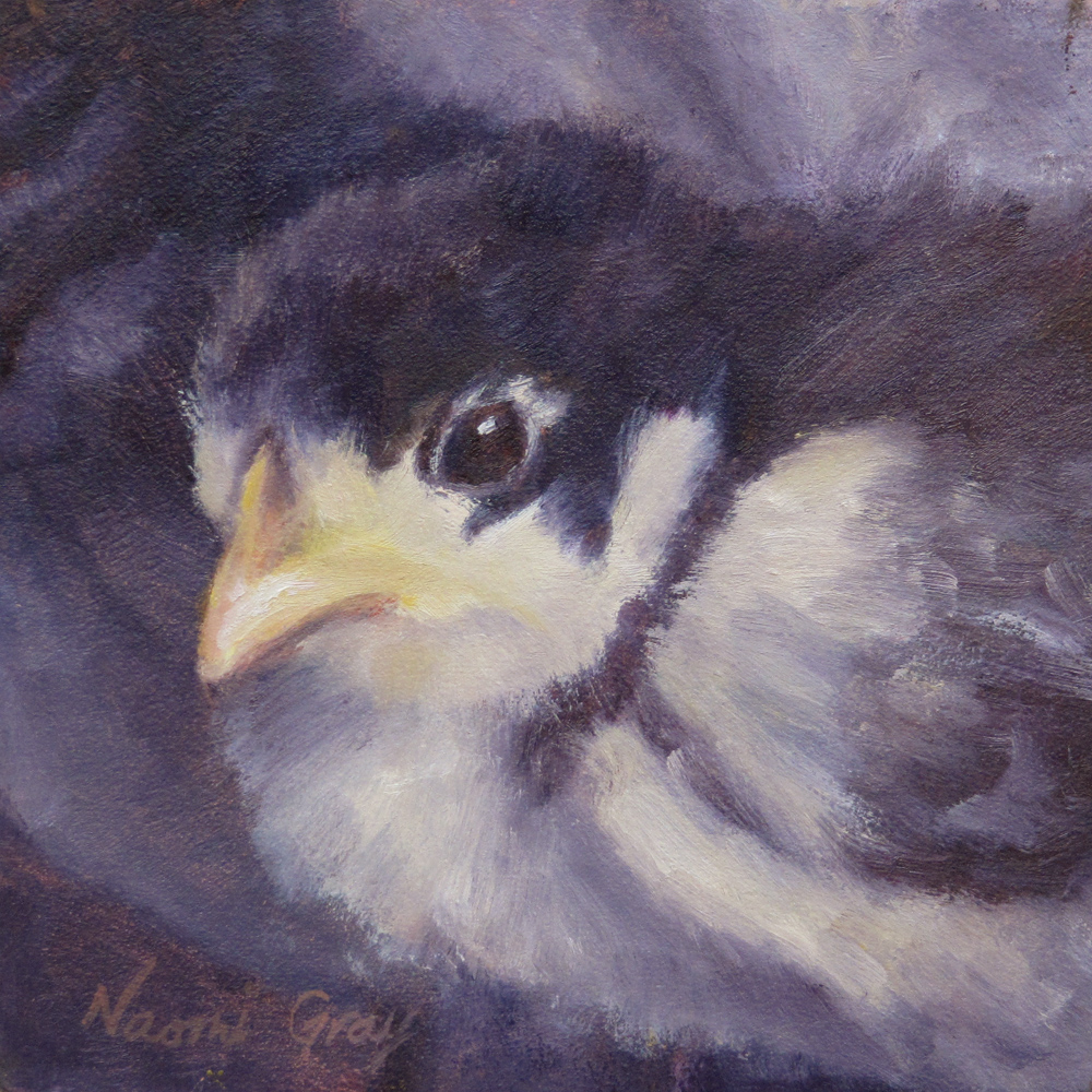 """Matsu the Baby Chick"" original fine art by Naomi Gray"
