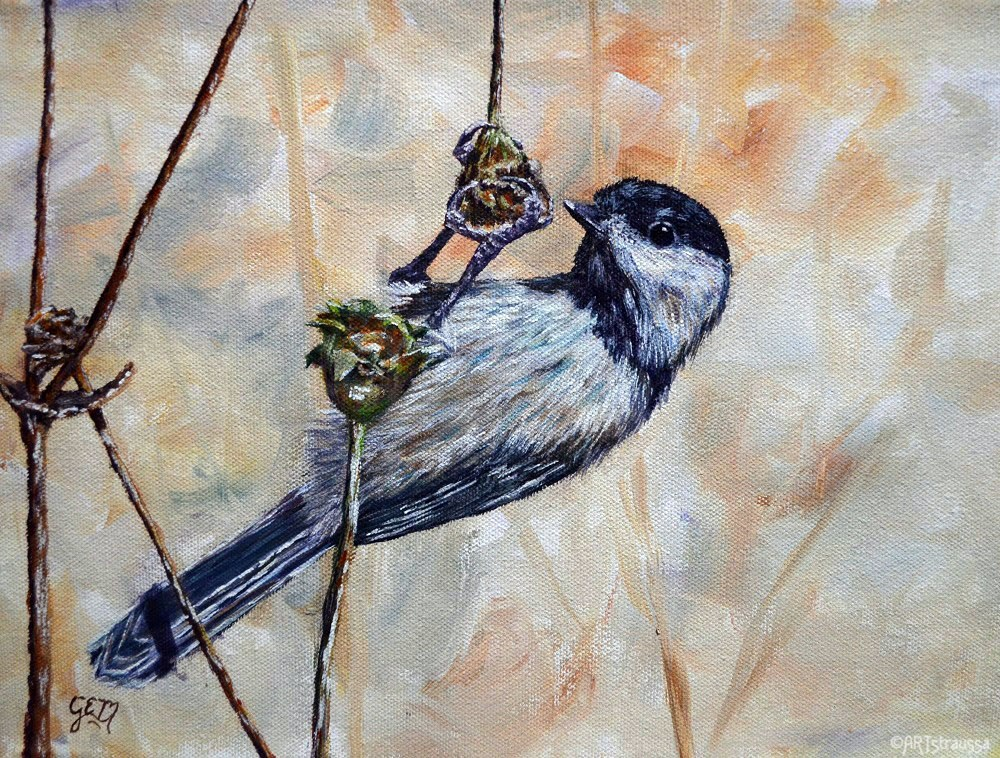 """Snacking Chickadee"" original fine art by Gloria Ester"