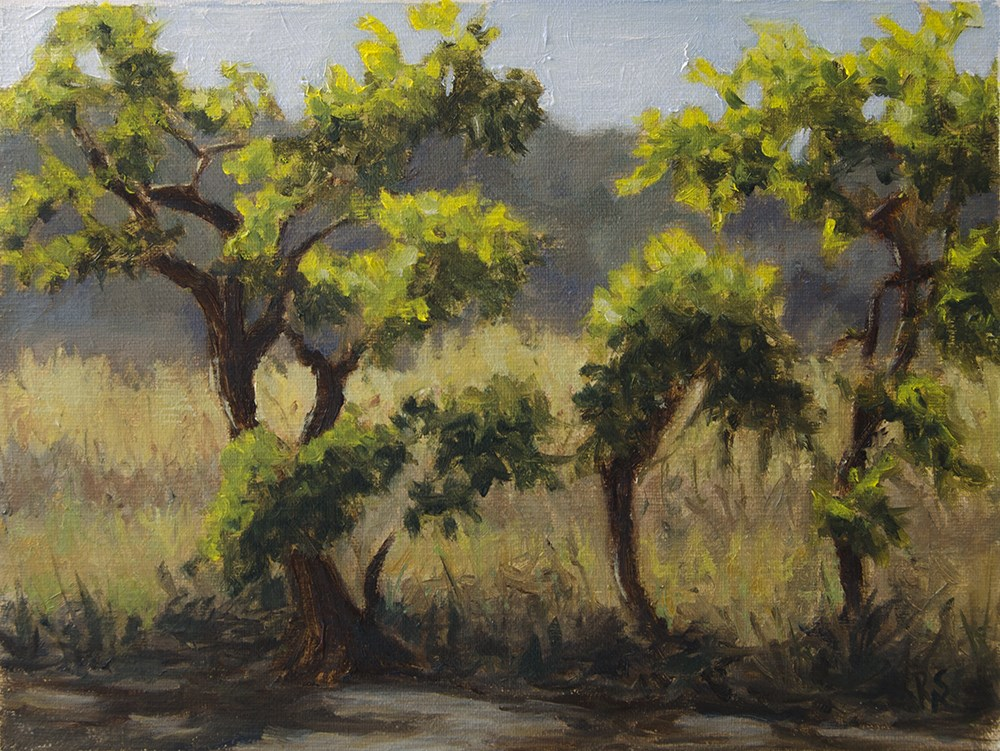 """Evening along the river in Pedro Valley"" original fine art by Rachel Steely"
