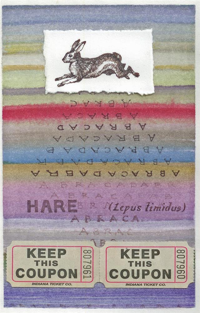 """Lepus timidus"" original fine art by Beatrix Pearl"