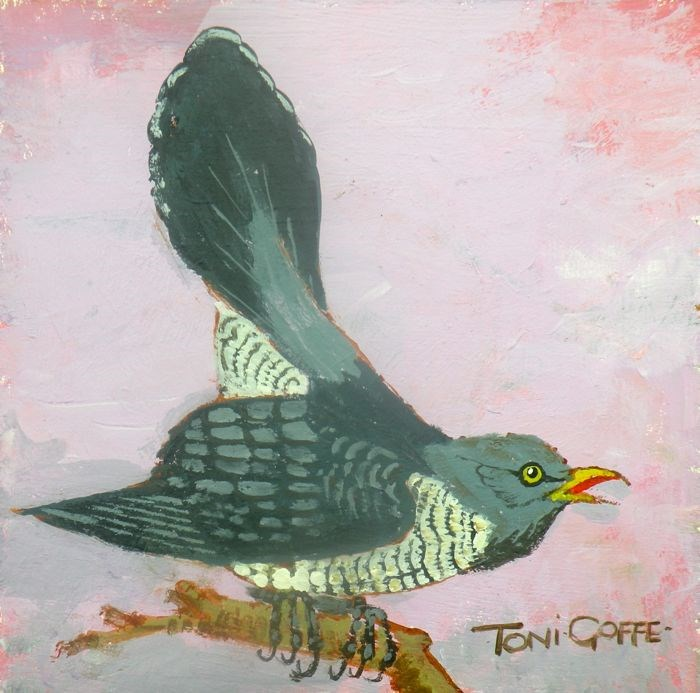 """Cuckoo"" original fine art by Toni Goffe"