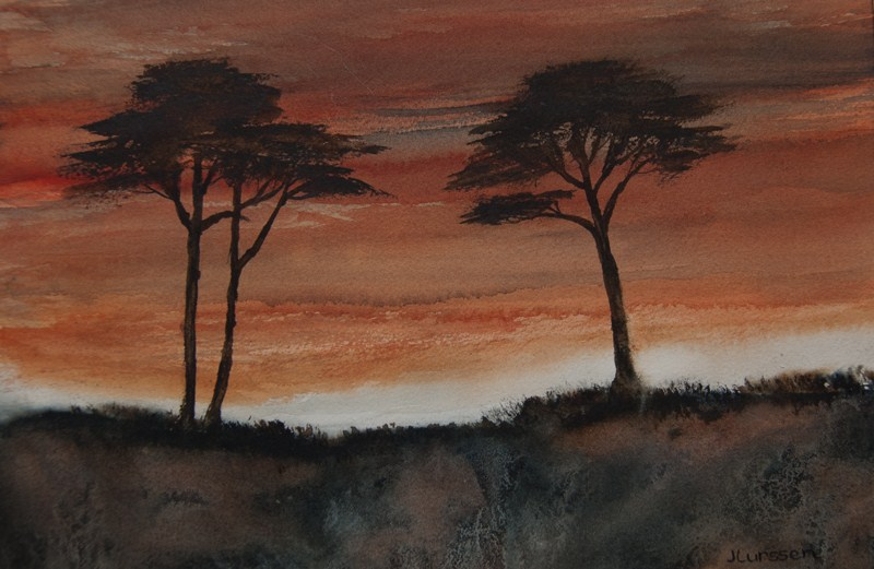 """Cypress Sunset"" original fine art by Jean Lurssen"