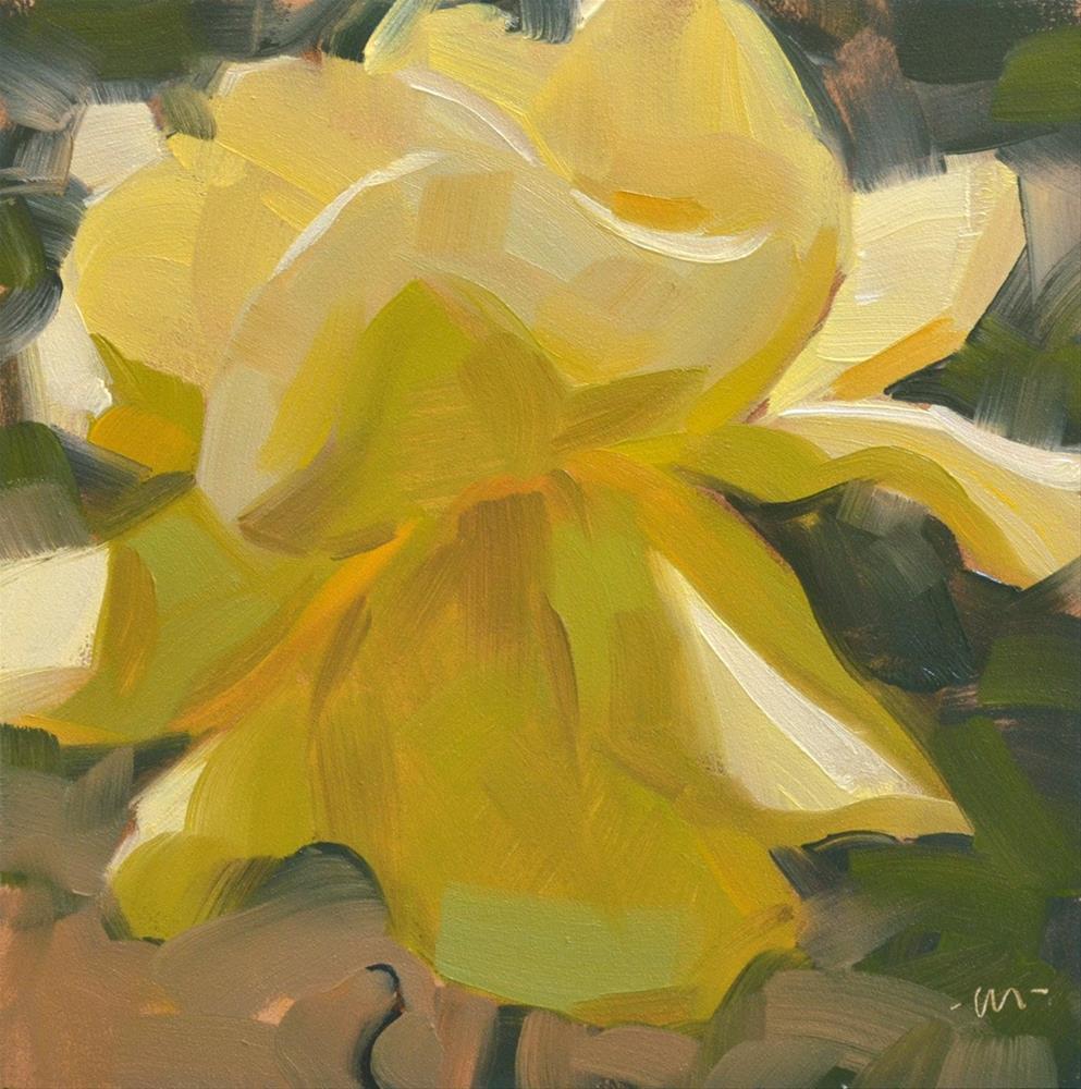 """Yellow Rose"" original fine art by Carol Marine"