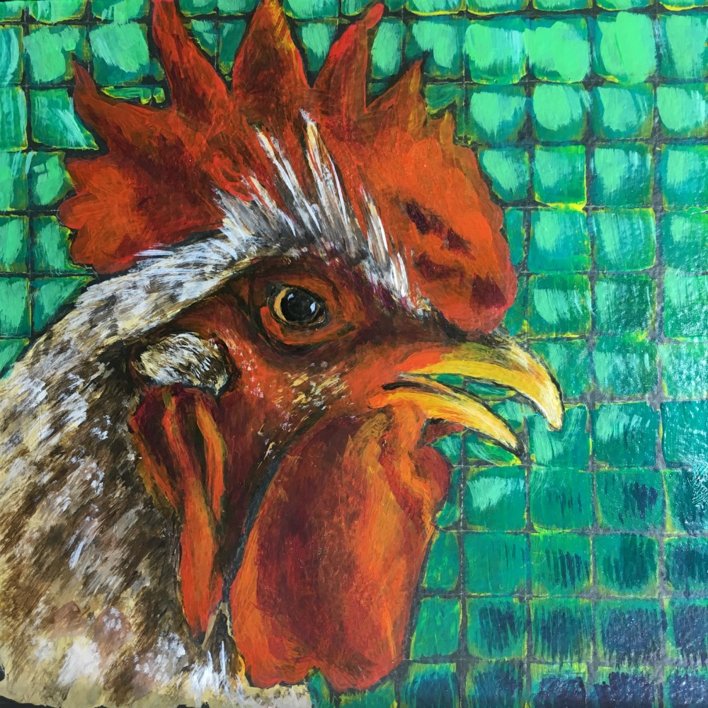 """Chicken 2 - SOLD"" original fine art by Colleen OHair"