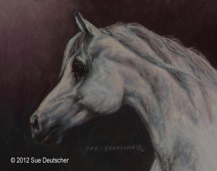 """""""Masri"""" original fine art by Sue Deutscher"""