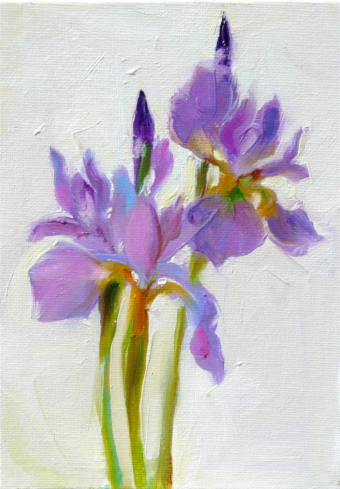 """New Iris in the Garden,still life,oil on canvas,7x5,price$175"" original fine art by Joy Olney"