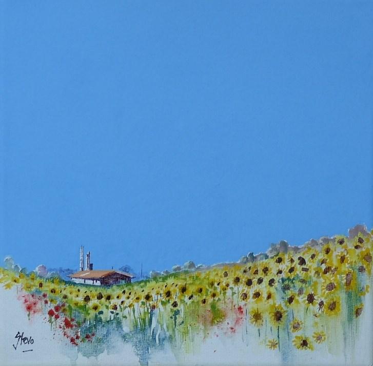 """Sunflower Fields"" original fine art by Martin Stephenson"