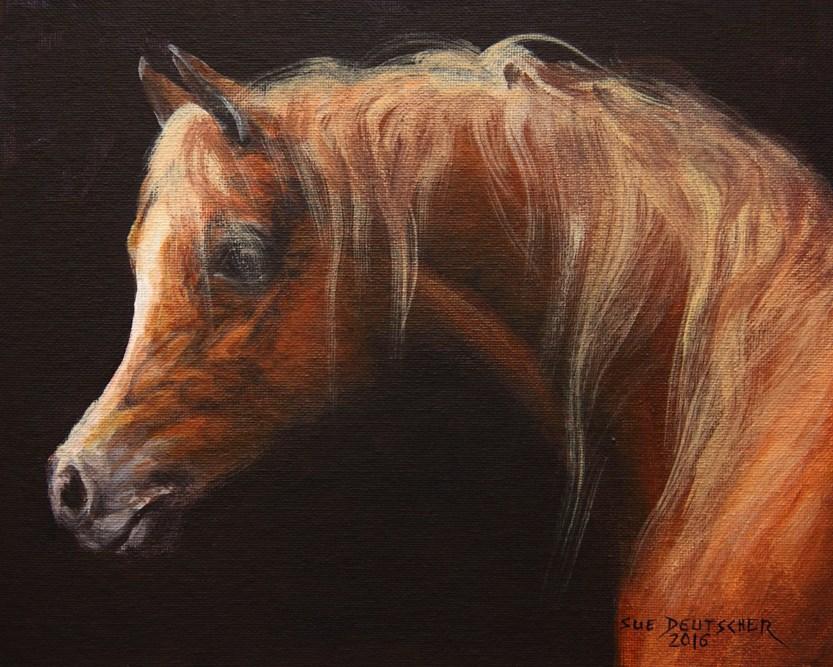"""""""Chestnut Arabian Horse"""" original fine art by Sue Deutscher"""