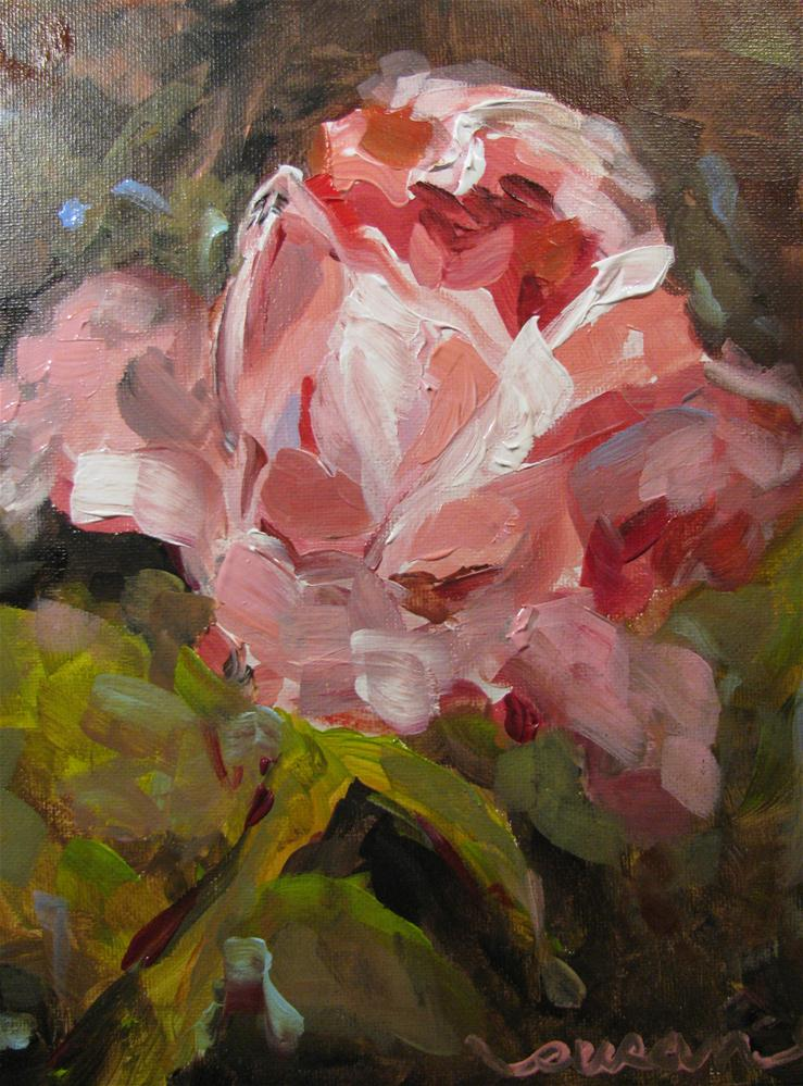 """David Austin Rose"" original fine art by Susan Elizabeth Jones"