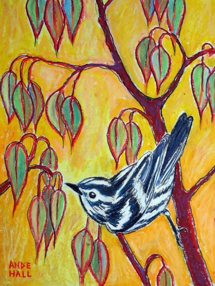 """Black and White warbler"" original fine art by Ande Hall"