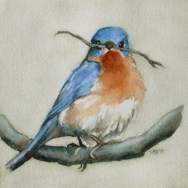 """""""Bluebird"""" original fine art by Sarah Buell Dowling"""