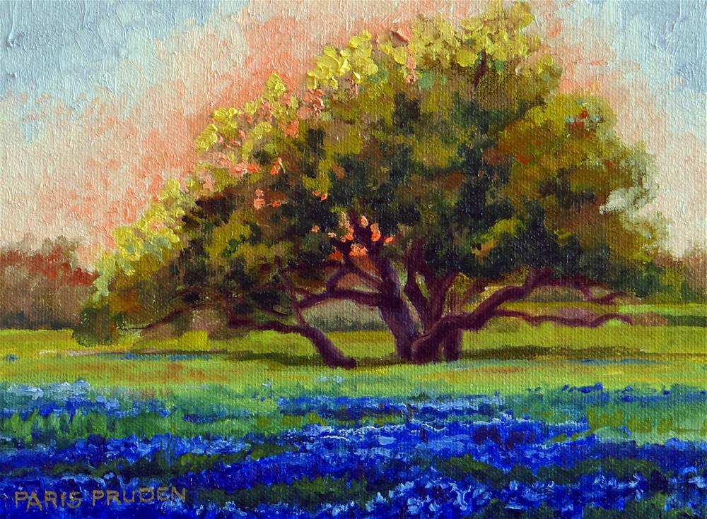 """Sunset with Bluebonnets"" original fine art by Nancy Paris Pruden"