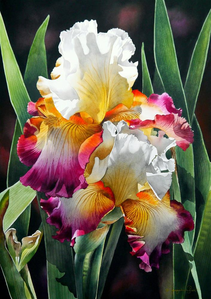 """Tri-Colored Irises"" original fine art by Jacqueline Gnott, whs"