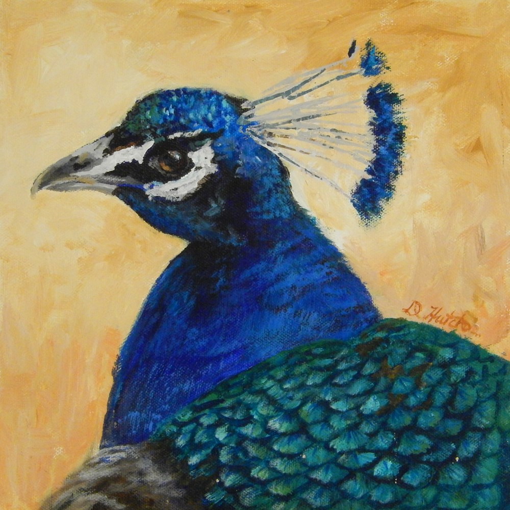 """Peacock #1"" original fine art by Diane Hutchinson"