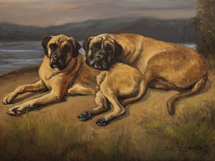 """Mastiffs pet portrait"" original fine art by Sue Deutscher"
