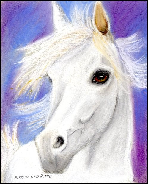 """Misty White Stallion"" original fine art by Patricia Ann Rizzo"