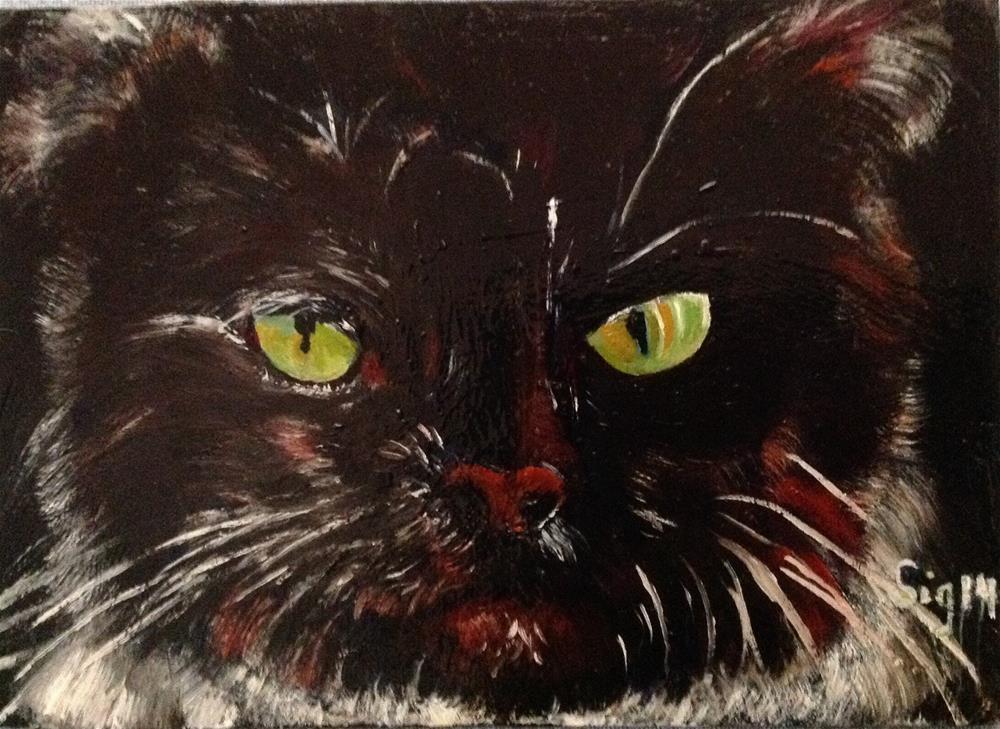 """Cat Study"" original fine art by Sigrid Victor"