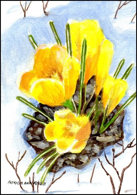 """Crocus - Harbingers of Spring 2"" original fine art by Patricia Ann Rizzo"