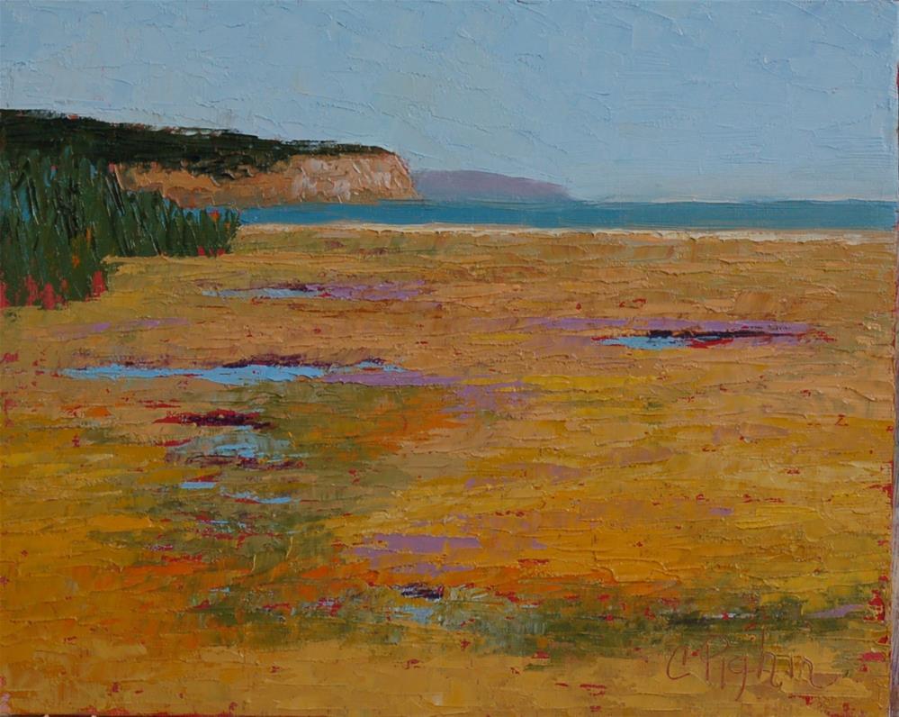 """Bay of Fundy"" original fine art by Carol Pighin"