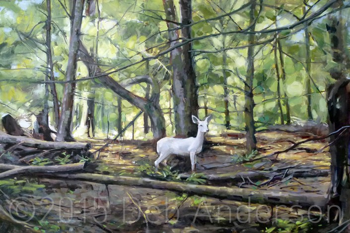 """Oil Painting: White Doe"" original fine art by Deb Anderson"