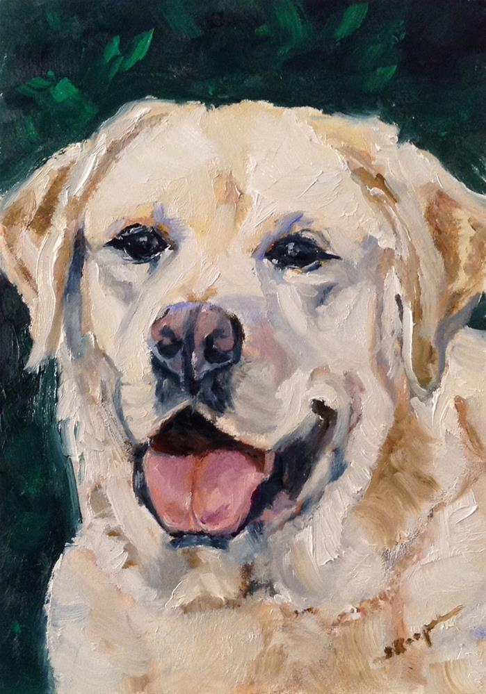 """Bo"" original fine art by Shelley Koopmann"