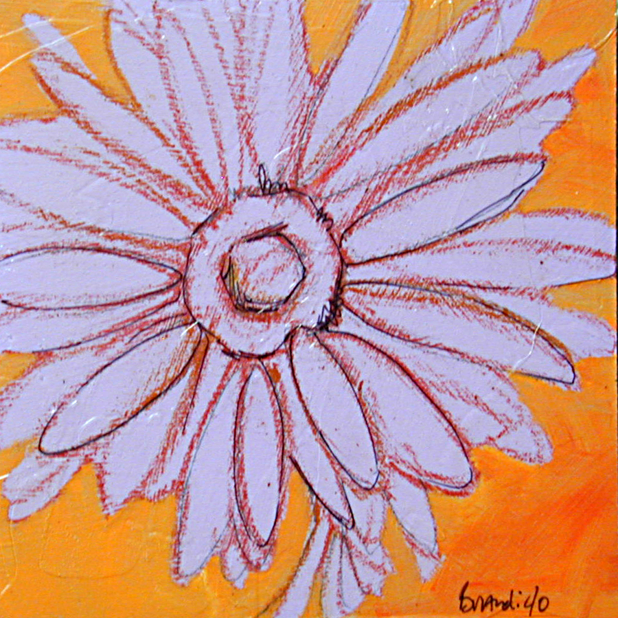 """lavender daisy sketch"" original fine art by Brandi Bowman"