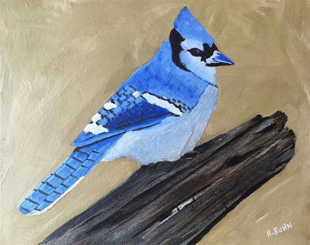 """""""Bluejay"""" original fine art by Helen Kuhn"""
