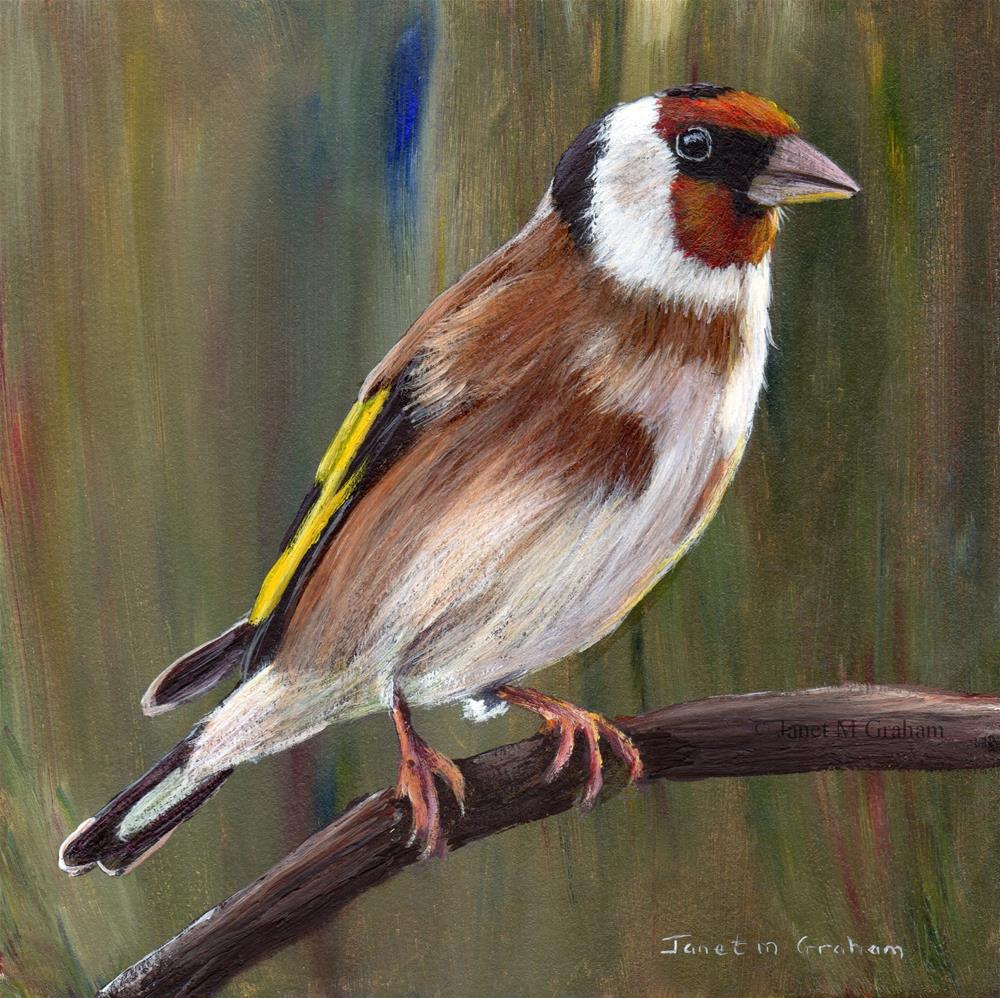 """European Goldfinch"" original fine art by Janet Graham"