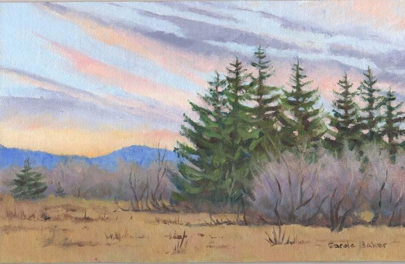 """Southern Sky, Winter Sun Set"" original fine art by Carole Baker"