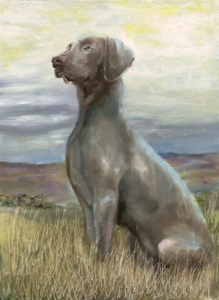 """Working dog (on a grey day)"" original fine art by Karen Robinson"
