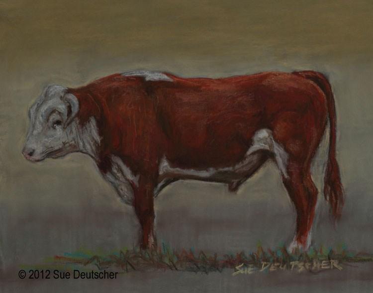 """""""Hereford Bull"""" original fine art by Sue Deutscher"""