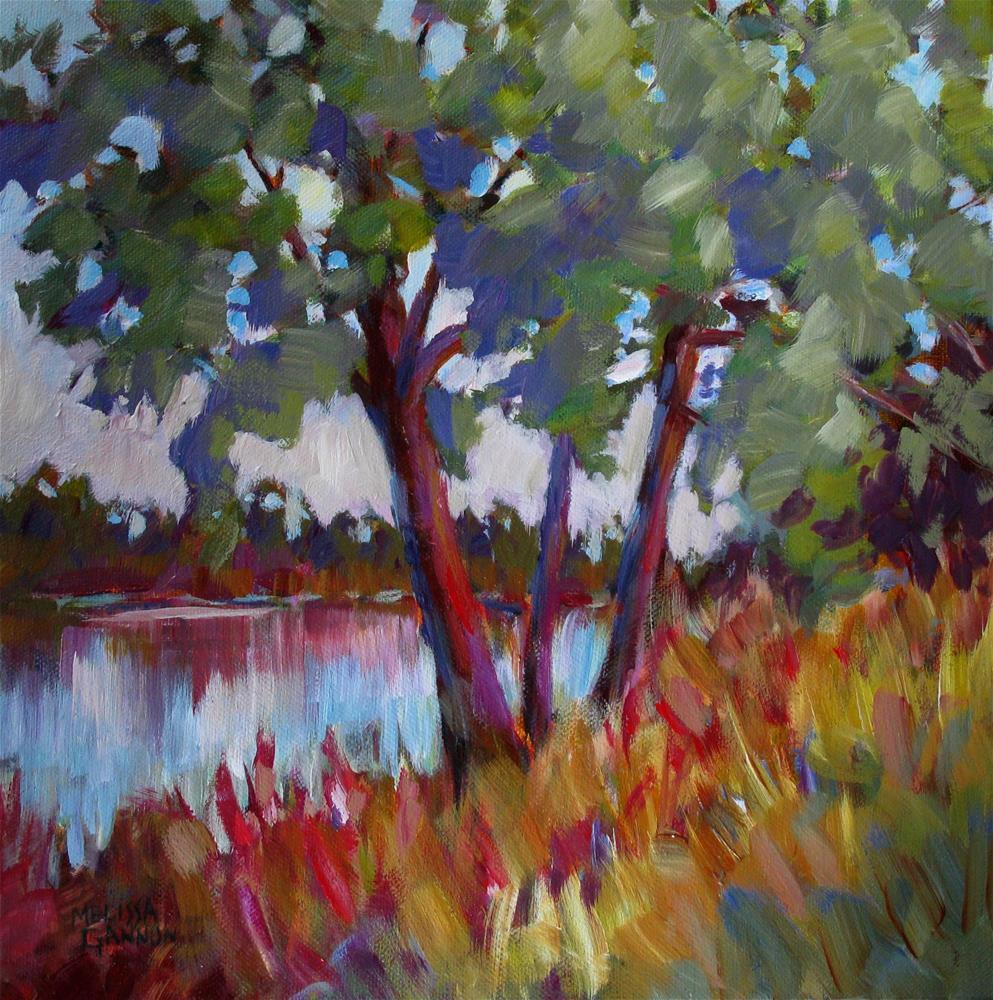 """""""View"""" original fine art by Melissa Gannon"""