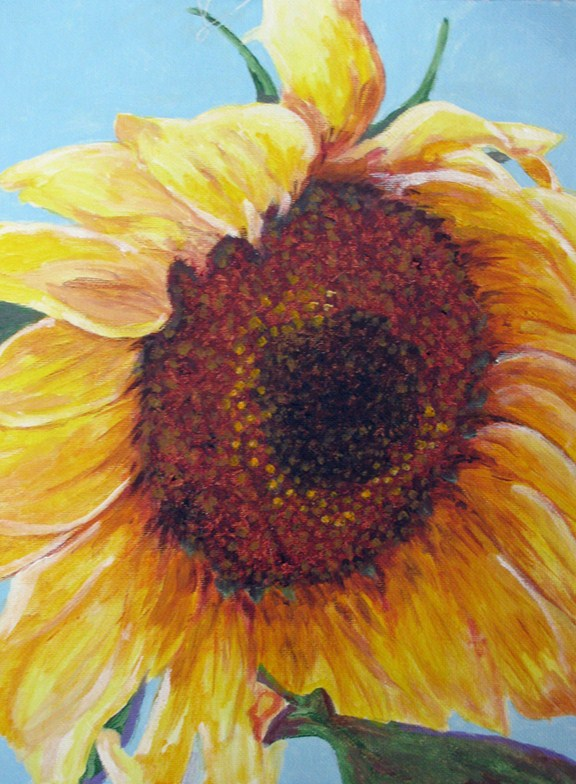 """Sunflower"" original fine art by Nan Johnson"