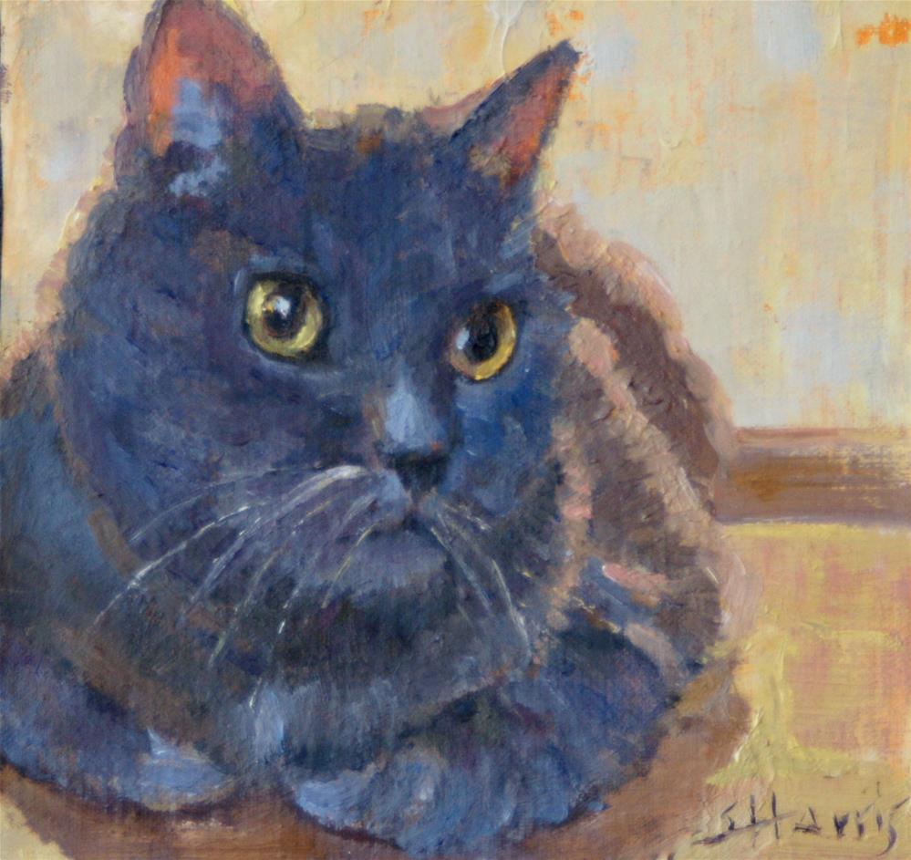 """Golden Eyes"" original fine art by Sandra L Harris"