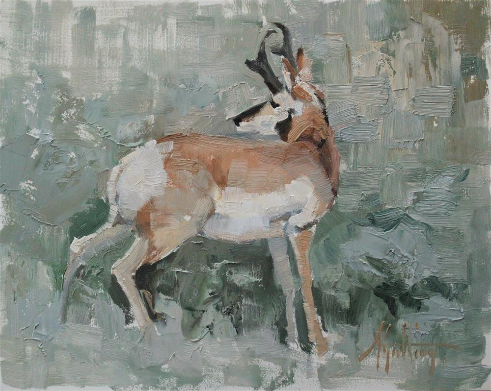 """Antelope Study #7"" original fine art by Abigail Gutting"