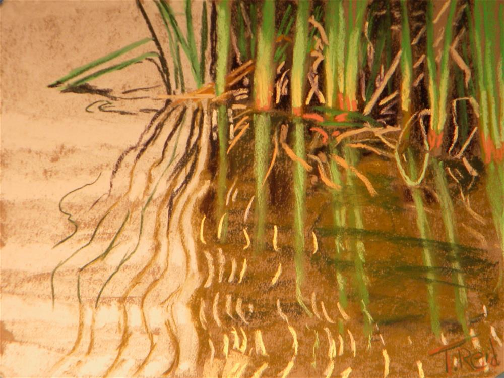 """Reed patterns "" original fine art by Toby Reid"