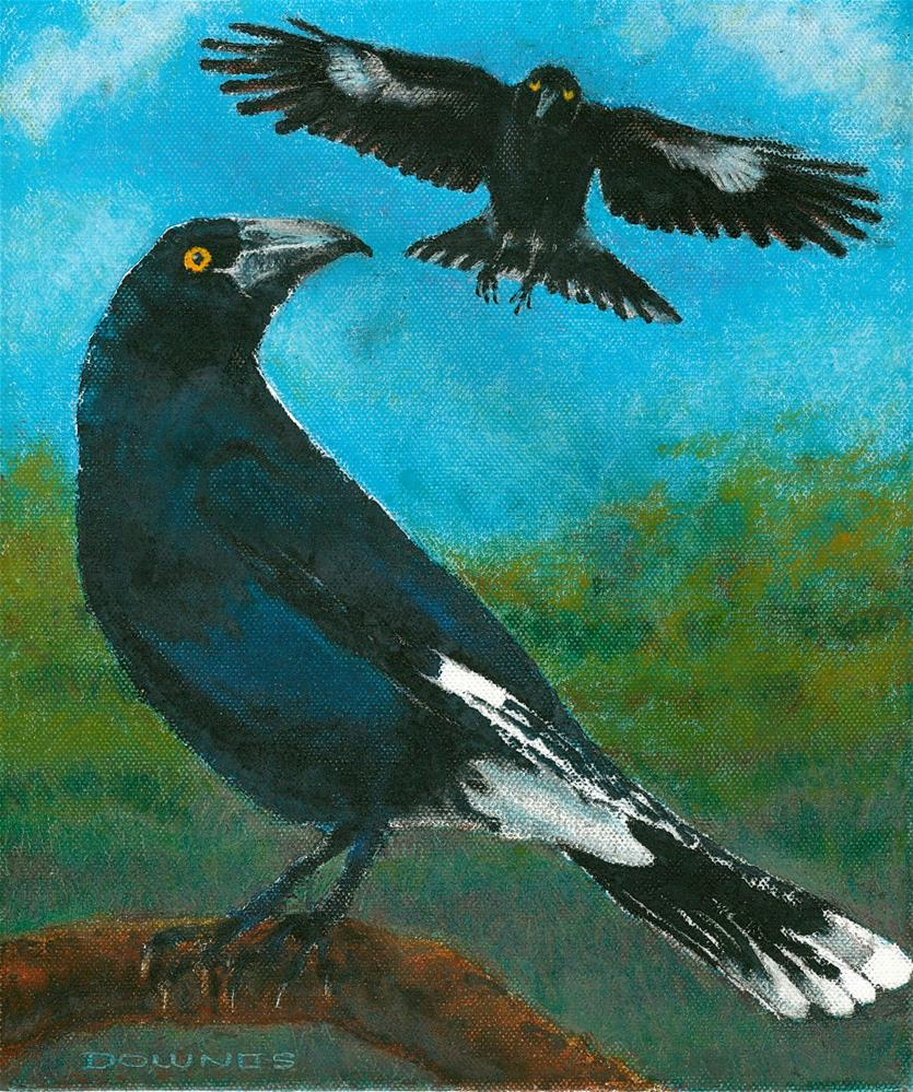 """336 AUSTRALIAN PIED  CURRAWONG"" original fine art by Trevor Downes"