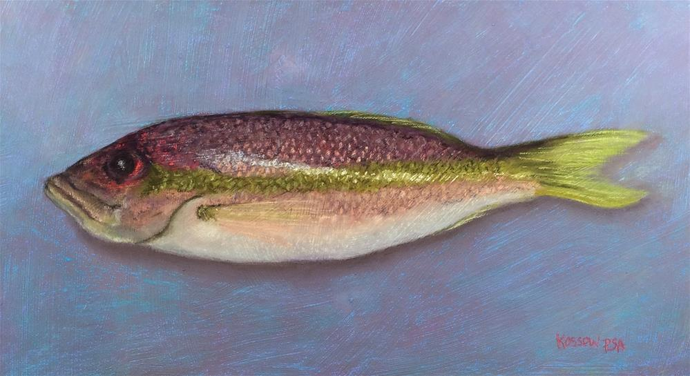 """Yellowtail Snapper"" original fine art by Cristine Kossow"
