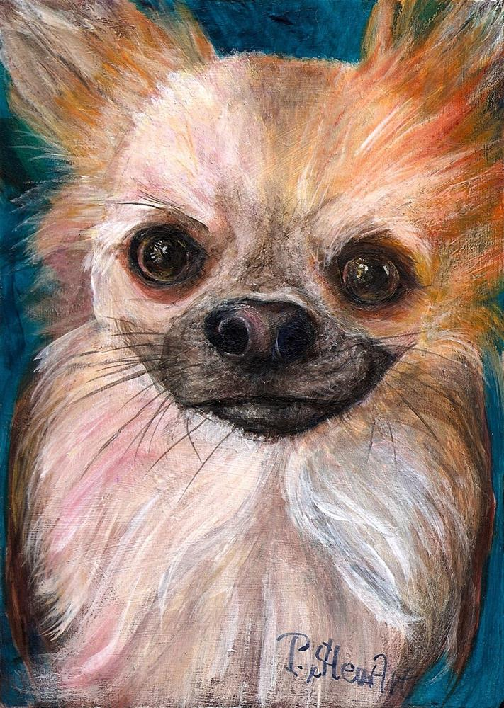 """""""5x7 Jackson Long Haired Chihuahua on Wood Panel 3/4 SFA Acrylic Painting Penny StewArt"""" original fine art by Penny Lee StewArt"""