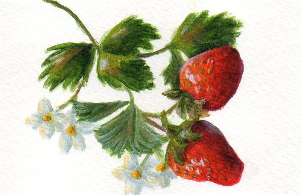 """Summer Sweetness"" original fine art by Debbie Shirley"