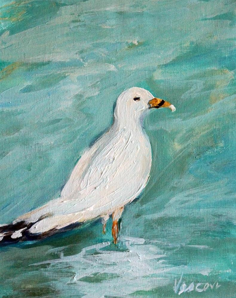 """Gull"" original fine art by Valerie Vescovi"