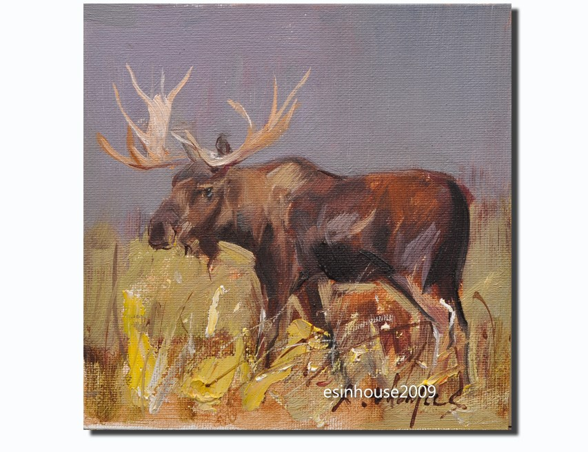 """moose"" original fine art by Thomas Xie"