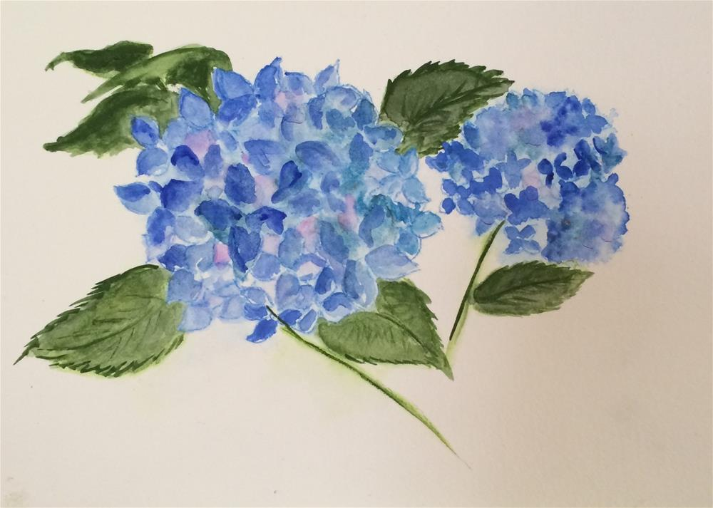 """Hydrangea #1 NFS"" original fine art by Nancy Beard"