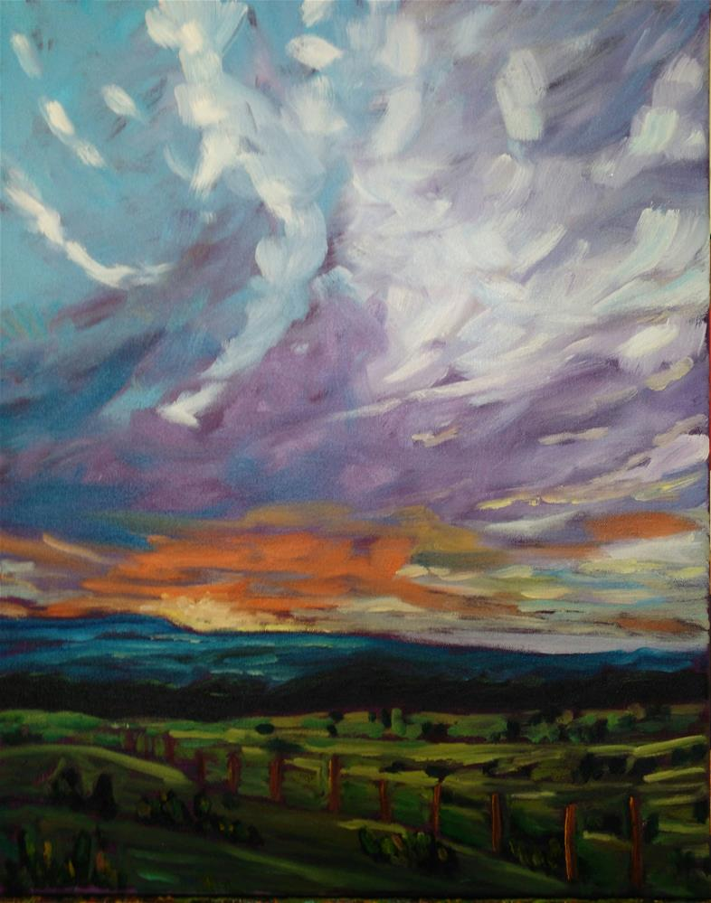 """New Mexico sunset"" original fine art by Robyn Wellman"