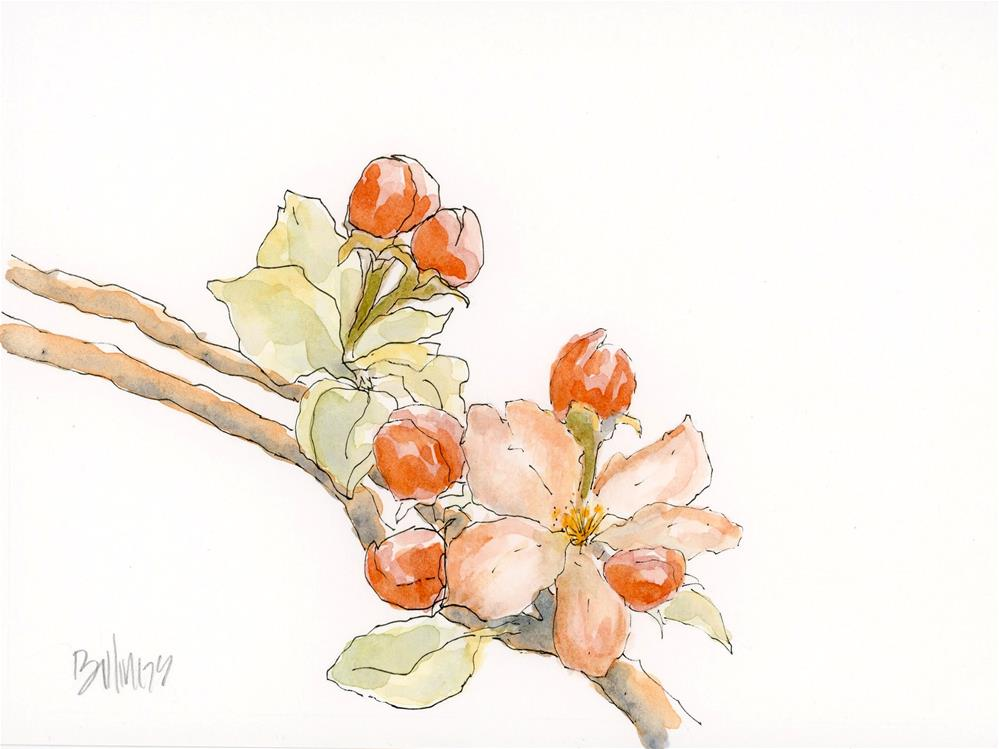 """Blossom Sketch"" original fine art by Susanne Billings"