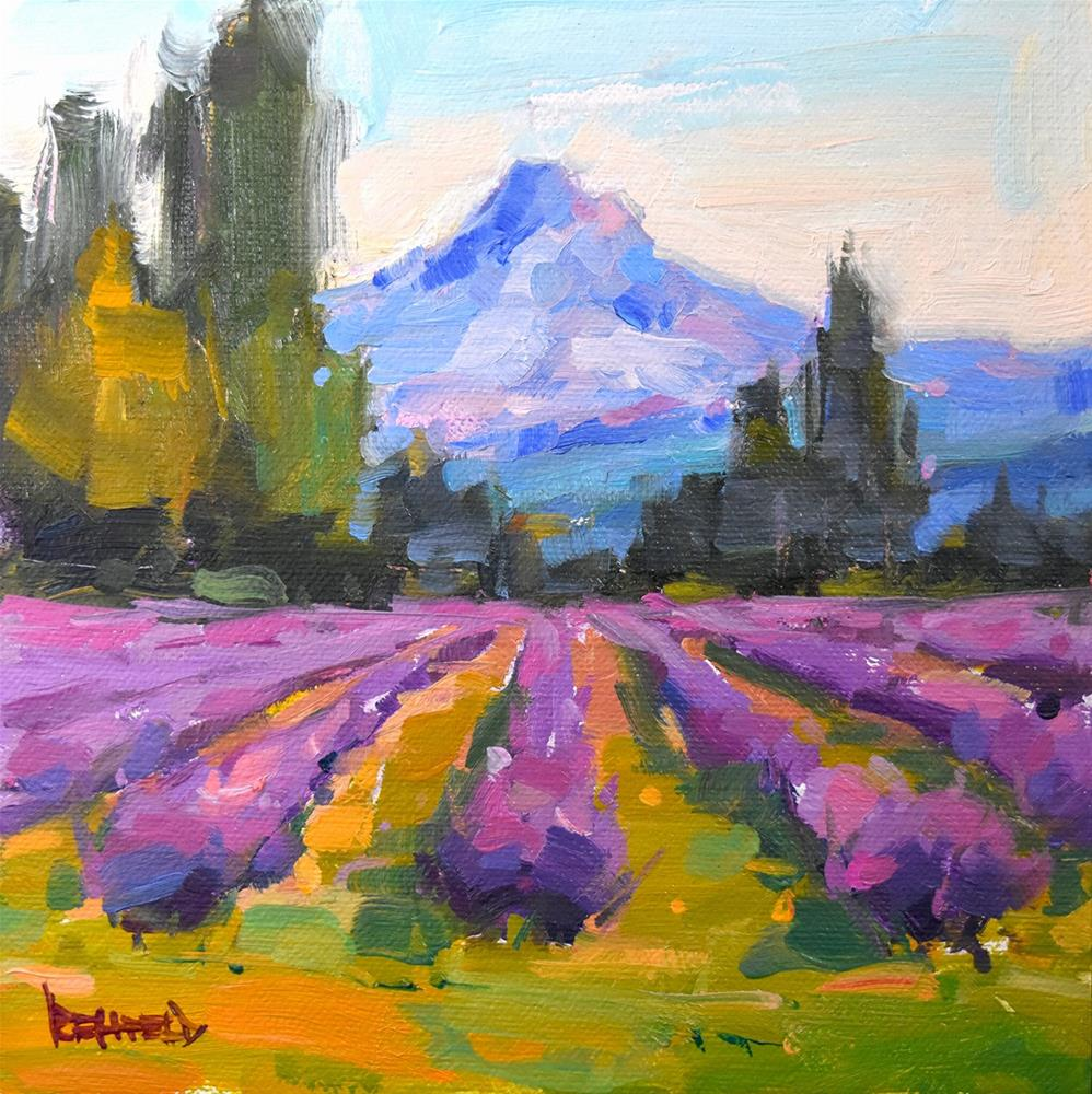 """Blooming Lavender"" original fine art by Cathleen Rehfeld"