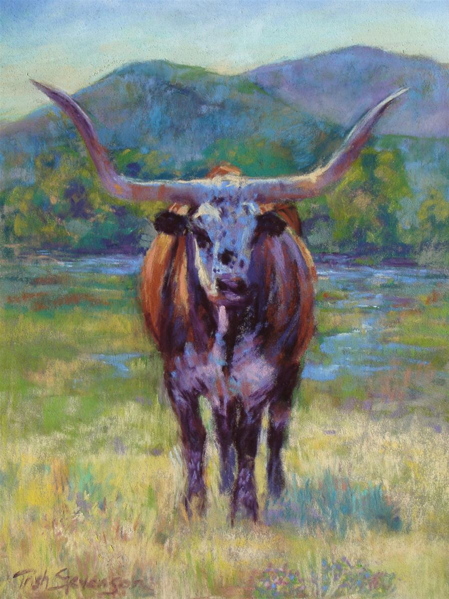 """Longhorn Colors"" original fine art by Trish Stevenson"