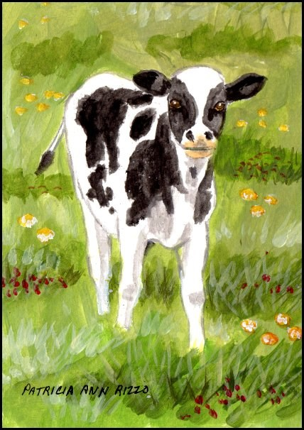 """A Calf"" original fine art by Patricia Ann Rizzo"